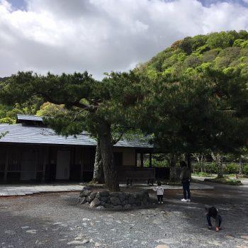 最後の京都観光でした!